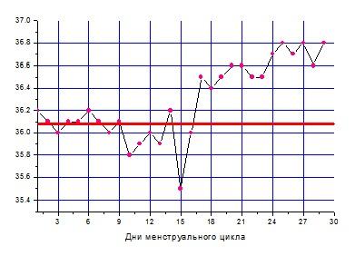 базальная температура, график базальной температуры, базальная температура при беременности