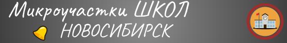 микроучастки школ 2021 в Новосибирске