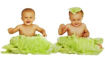 Поздравляем, у вас двойня Или как питаться будущей маме при многоплодной беременности
