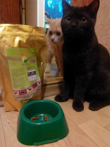 Тест-драйв корма для животных. Новый холистический (здоровый, натуральный) корм для собак и кошек российского производства. Отзывы о корме для домашних животных LiveRa от компании «БиоТоп+»