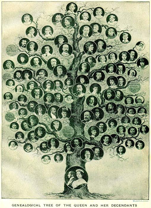 генеалогическое дерево скачать бесплатно программу - фото 9