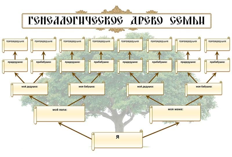 Как рисовать дерево с родословной