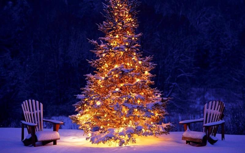 Картинки к произведениям о зиме для школьников
