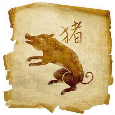 Год Крысы по восточному гороскопу