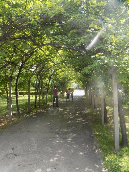 Прогулка по парку имени Кирова